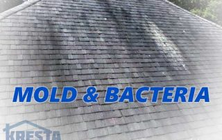mold and bacteria on roof roofing company san antonio