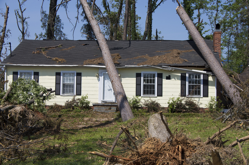 tree damage roof repair company san antonio texas